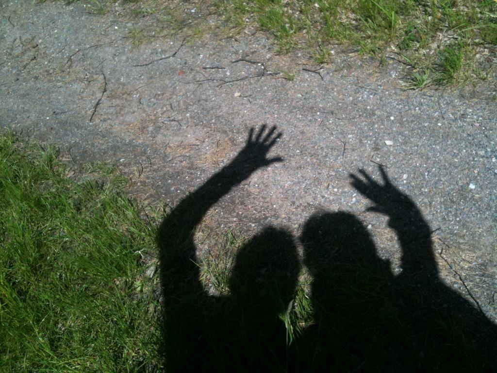 Blog 2 Schattenspiel